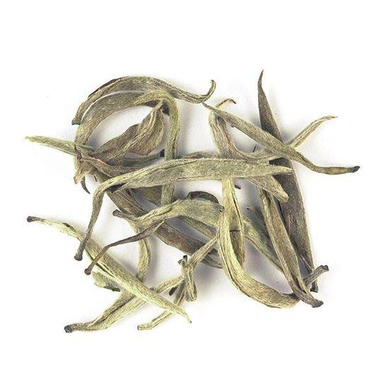 Jinggu Spring Buds
