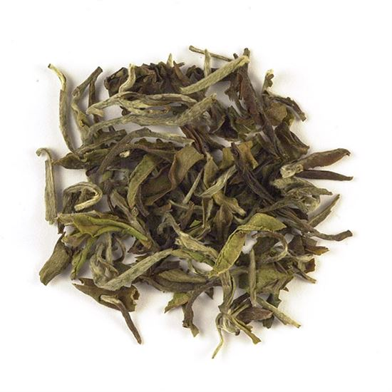 Indian loose leaf white tea